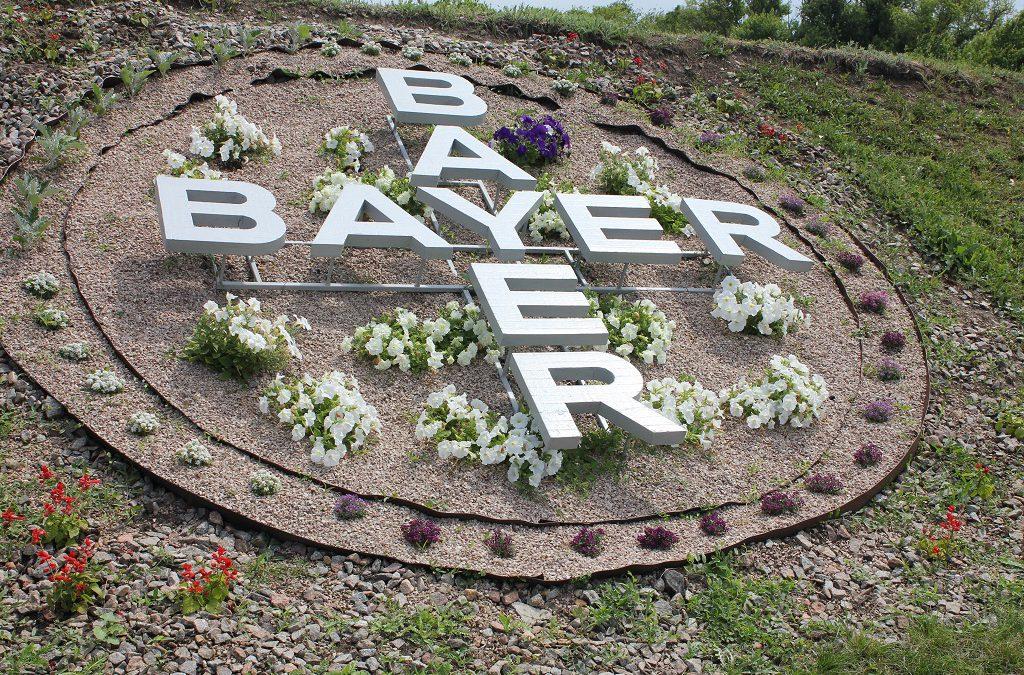 """День поля от компании """"Bayer"""""""
