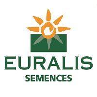 Гибриды подсолнечника «ЕВРАЛИС СЕМЕНС» (EURALIS SEMENS)