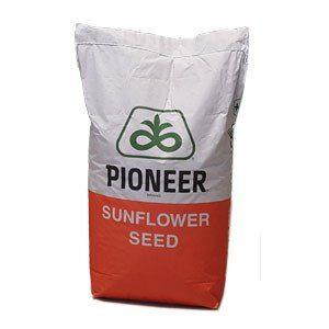 Семена подсолнечникаPioneer