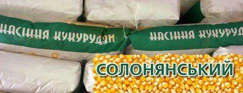 Кукуруза Солонянский 298 СВ