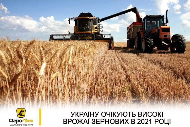 Україну очікують високі врожаї зернових та зернобобових культур в 2021 році