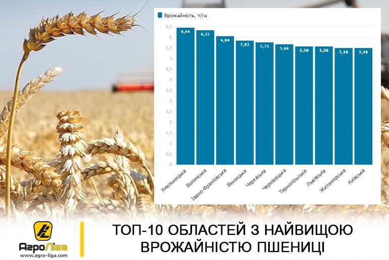 ТОП-10 областей з найвищою врожайністю пшениці